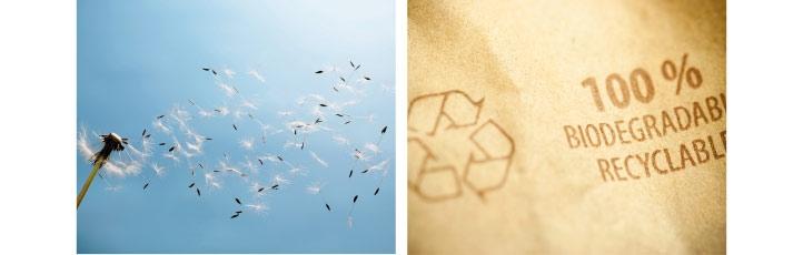 Papier recyclable montrant notre engagement pour la planète