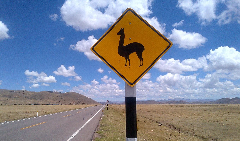 Remote Site de Newrest en Perú