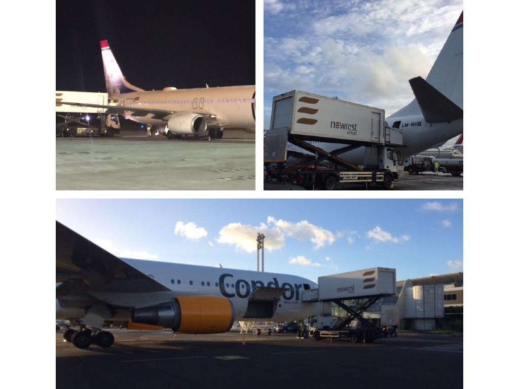 Newrest aux Antilles Norwegian et Condor